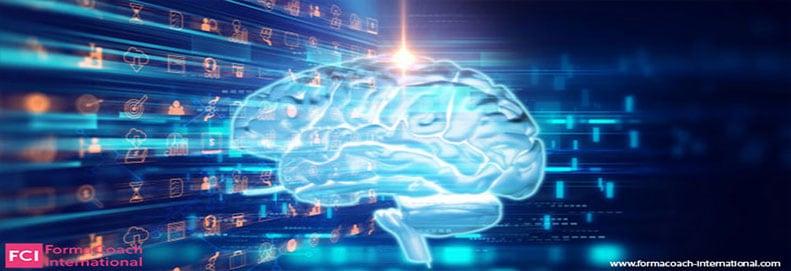Formation techniques de Programmation Neuro Linguistique